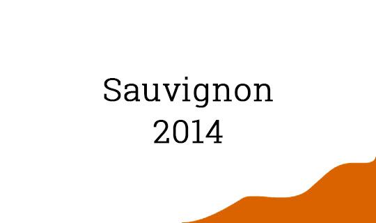 Kante-Sauvignon-2014