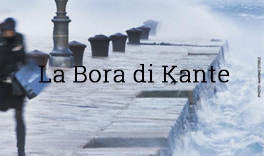bora-thumb