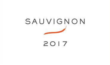Kante-Sauvignon-2017